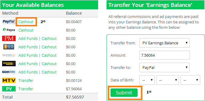 Primer pago de PaidVerts