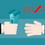 Buxp sigue pagando en 2016: 35$ por PayPal