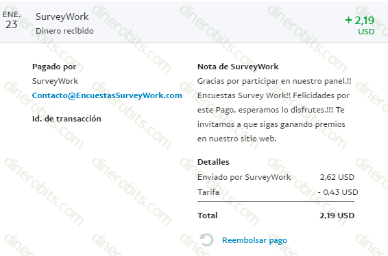 Primer pago por PayPal de Survey Work