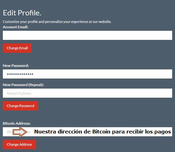 Perfil de usuario en CoinBulb