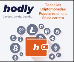 Que es Hodly y como funciona