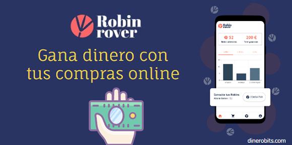 Robin Rover que es