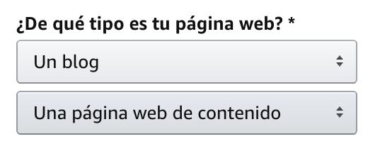 Tipo de web para ganar dinero con Amazon