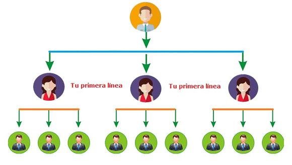 Plan de compensación en red de mercadeo